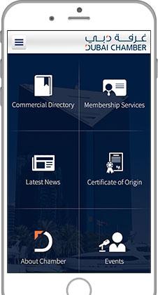 Best iPhone App Developers in Dubai - UAE  Top ranked iOS